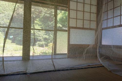 蚊帳の設置